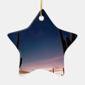 La estrella de los desiertos arrastra el Saguaro Adorno Navideño De Cerámica En Forma De Estrella