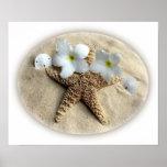 La estrella de mar descasca Plumeria en la arena Póster