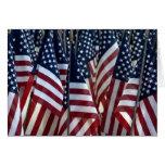 la estrella spangled la bandera felicitación