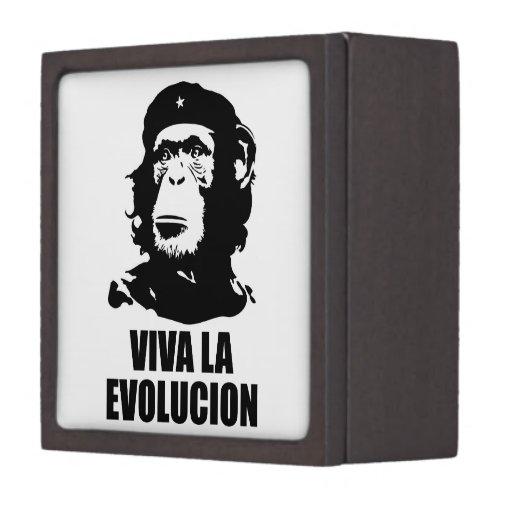 La Evolucion de Viva Cajas De Recuerdo De Calidad