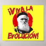 ¡La Evolucion de Viva! Poster