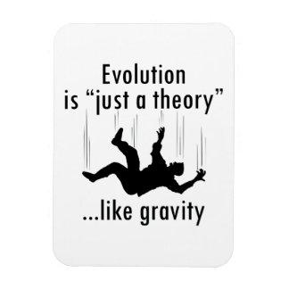 La evolución es apenas un imán de la teoría