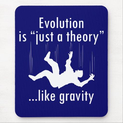 La evolución es apenas un mousepad de la teoría