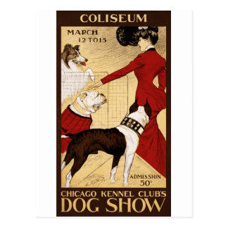 La exposición canina del club de la perrera de Chi Tarjetas Postales
