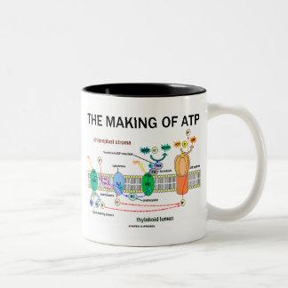 La fabricación de ATP (actitud fotosintética) Taza De Dos Tonos