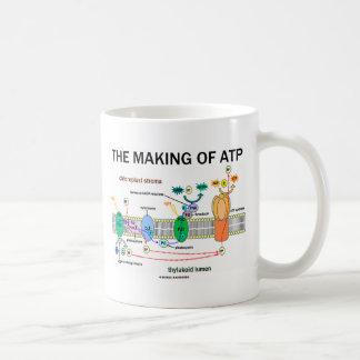 La fabricación de ATP (fotosíntesis dependiente de Taza