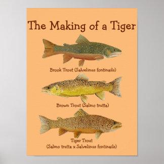 La fabricación de un tigre poster