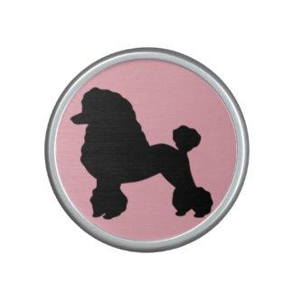 La falda rosada del caniche inspiró al locutor de altavoz