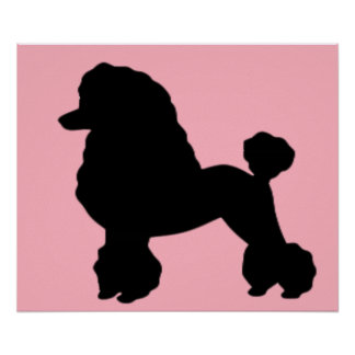 La falda rosada del caniche inspiró el poster