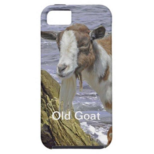 La fantasía de los niños de la cabra del agua iPhone 5 carcasa