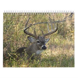 La fauna 2008 de Henry - modificada para Calendario