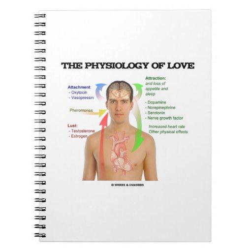 La fisiología del amor (síntomas del amor) libro de apuntes con espiral