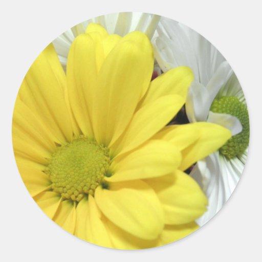 La flor amarilla de las margaritas de la margarita pegatinas redondas