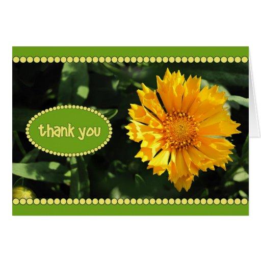 La flor amarilla del Coreopsis le agradece cardar Tarjetón