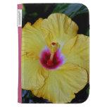 La flor amarilla del hibisco enciende el folio