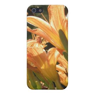 La flor anaranjada del Daylily del lirio de día fl iPhone 5 Carcasa