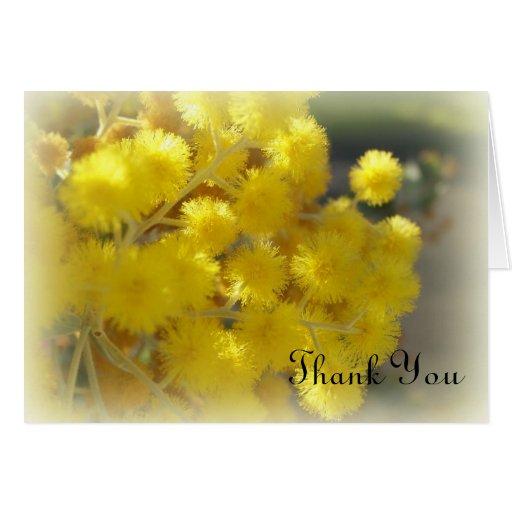 La flor australiana le agradece tarjeta de felicitación