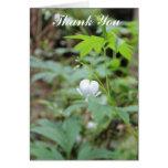 La flor blanca del corazón le agradece cardar tarjetón