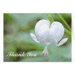 La flor blanca del corazón le agradece tarjeta de