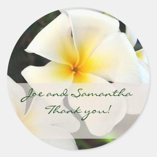 La flor blanca del Plumeria le agradece pegatina