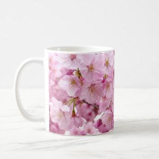 La flor de cerezo florece la taza de café