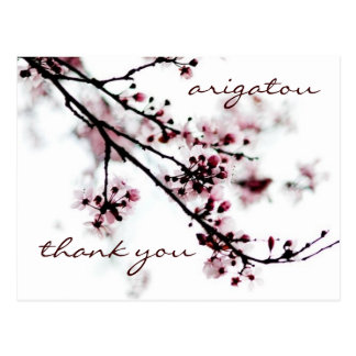 La flor de cerezo le agradece postal