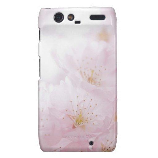 La flor de cerezo Motorola encajona Motorola Droid RAZR Carcasas