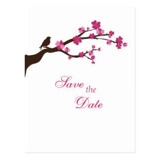 La flor de cerezo y el pájaro elegantes ahorran la tarjeta postal