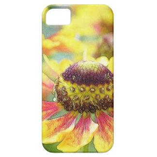 ¡La flor de Helen - el Helenium! Funda Para iPhone SE/5/5s