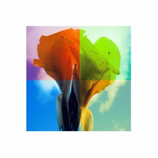 La flor del arte pop en diverso color quads mirada escultura fotografica