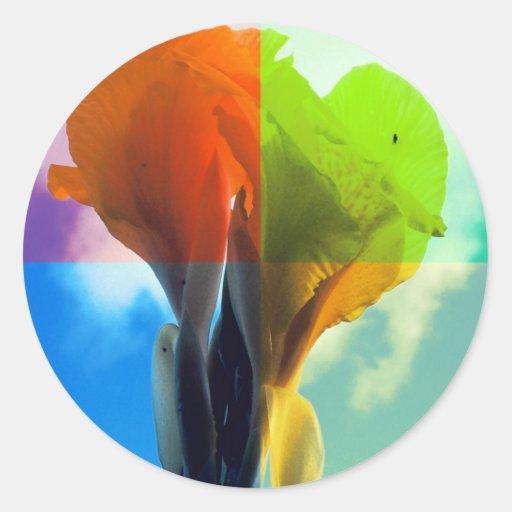 La flor del arte pop en diverso color quads mirada etiquetas redondas