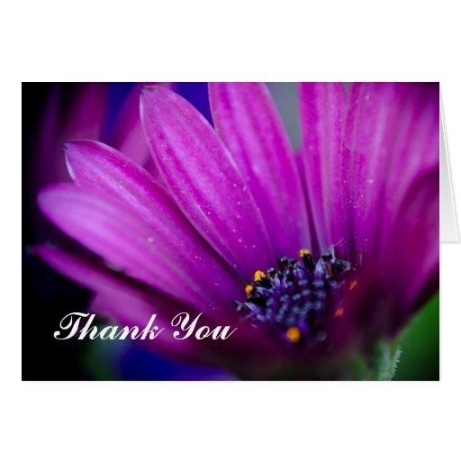 La flor hermosa le agradece tarjeta de felicitación