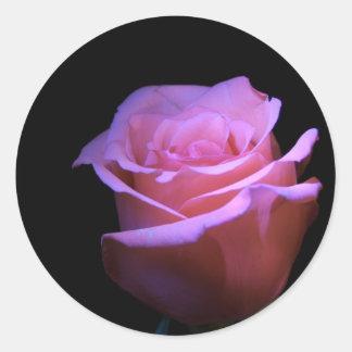 La flor más dulce que sopla… pegatina redonda