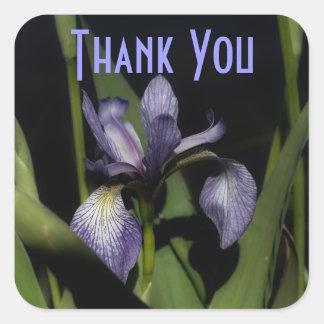 La flor púrpura del iris le agradece pegatina