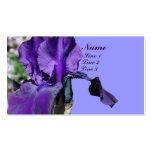 La flor púrpura del iris para arriba cierra la tar
