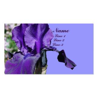 La flor púrpura del iris para arriba cierra la tarjetas de visita