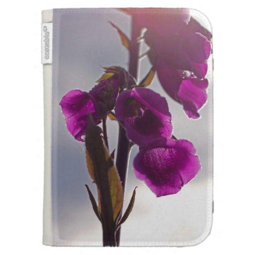 La flor púrpura enciende la caja