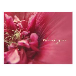 La flor roja de la pasión le agradece postales