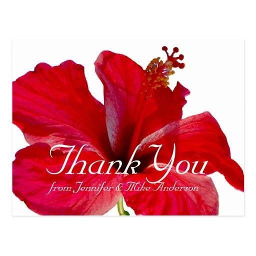 La flor roja tropical del hibisco le agradece tarjetas postales
