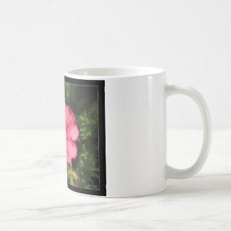 La flor rosada se descolora taza de la foto