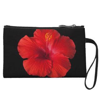 La flor tropical del hibisco rojo florece floral