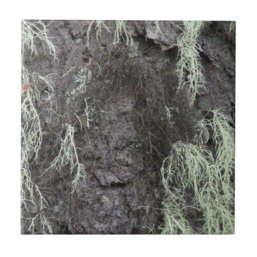 La flora de Slough de la presa del castor florece  Azulejo Cuadrado Pequeño