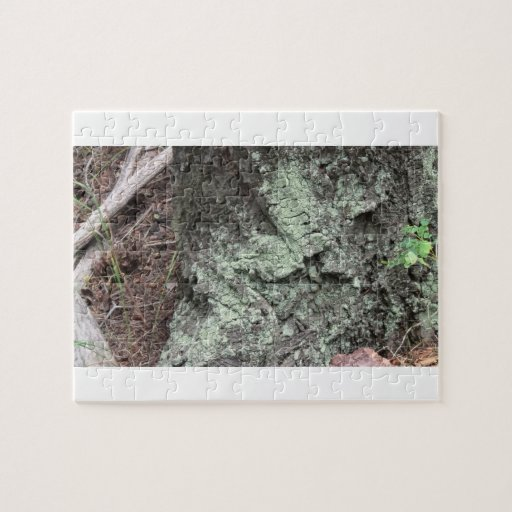 La flora de Slough de la presa del castor florece  Puzzle Con Fotos