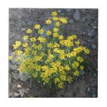 La flora de Umatilla Oregon florece la botánica de Azulejo Ceramica