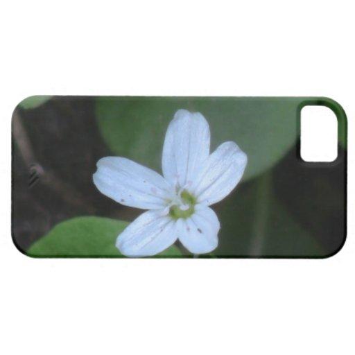 La flora de Umatilla Oregon florece la botánica de iPhone 5 Protectores