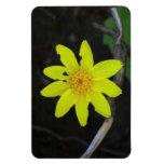 La flora de Umatilla Oregon florece la botánica de Imán Rectangular