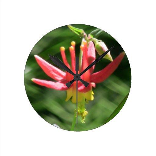 La flora de Umatilla Oregon florece la botánica de Relojes