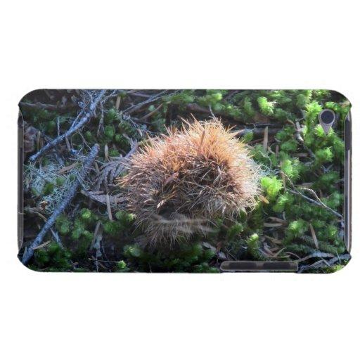 La flora del Mt Jefferson Oregon planta la botánic iPod Touch Case-Mate Protector