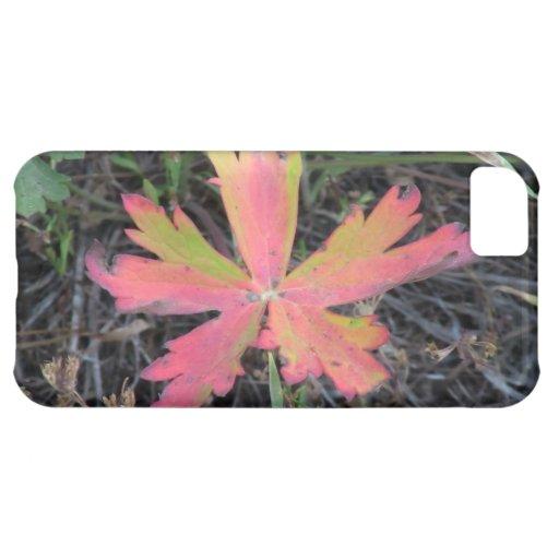La flora negra del barranco de Ochoco planta biota Funda Para iPhone 5C