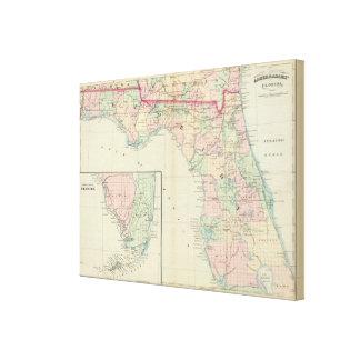 La Florida 7 Lienzo Envuelto Para Galerias